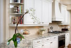 tampa granite countertop alternatives with glass multipurpose canisters kitchen traditional and hardware container plants