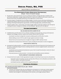 Sample Resume For Hr Sample Resumes for Hr Professionals Picture Human Resources Director 25