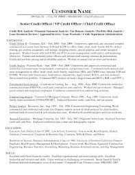 Awesome Collection Of Senior Loan Officer Credit Officer Resume