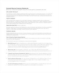 Resume Summary Example Resume Summary Examples For Sales Resume