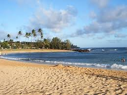 Image result for sandy beach