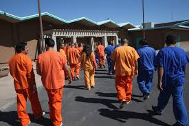 trump administration prepares to execute vicious executive order florence az 28 immigrant detainees walk through the immigration and customs enforcement