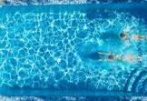 טרנדים בעיצוב בריכות שחיה ביתיות