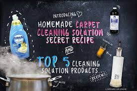 homemade carpet stain remover the best carpet cleaning solution best carpet extractor cleaner reviews 2019