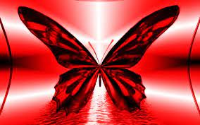 Black And Red Butterfly Wallpaper