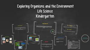 Exploring Organisms and the Environment by Katelyn Godwin