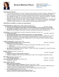 National Account Manager Resume Examples Best Of Resume Key Account