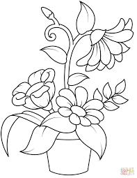 Vaso Di Fiori Disegni Da Colorare Ultra Coloring Pages Avec Et Vaso