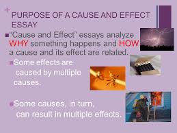 tuesday language arts cause and effect essay   cause and effect essays analyze why something happens and how a cause and its effect