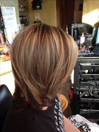 Color Highlight And Lowlight Hairstyles Favorable
