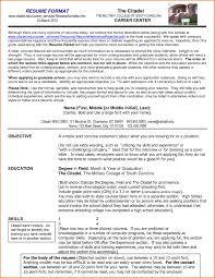 Prepare Resume Format Therpgmovie