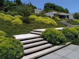 Site Design Landscape Architects Cronulla