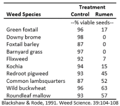 Feeding Weedy Hay Implications For Future Weed Problems