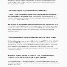 Resume Builder Livecareer Adorable Resume Now Review Beautiful Resume Examples Resume Builder