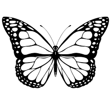colouring pages of butterfly. Plain Butterfly Butterfly Coloring Sheets Printables  Free Printable  Pages For Kids Inside Colouring Of T