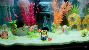 Resultado de imagen de fotos acuarios infantiles