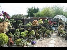 bonsai gardens. building a bonsai garden gardens r