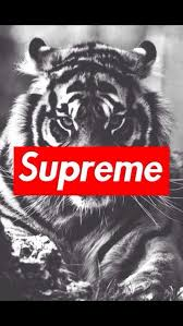 supreme on hip hop supreme clothing and logos