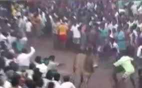 slew of people. 2 killed, 83 hurt on first day of legal jallikattu event in tamil nadu slew people