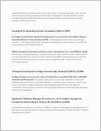 Executive Resume Summary Statement Examples Resume Summary Statement