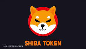 How to buy Shiba Inu Coin in India? Know more about this new viral  cryptocurrency – HodlDesk