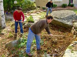 use a hoe to remove smaller vegetation