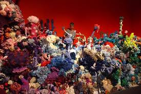 we are all corals now a crafty yarn about global warming the margaret wertheim in the fohr satellite reef at the museum kunst der westkuste photo acirccopy institute for figuring