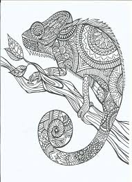 Small Picture Free Coloring Pages Adults FunyColoring