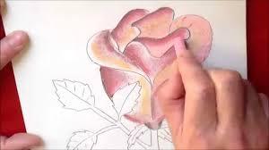 Dessin Et Coloriage D Une Rose Facile Faire Tuto Dessin Fleur