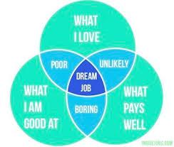 best choosing a career ideas choosing a major best 25 choosing a career ideas choosing a major rug size and rug ideas