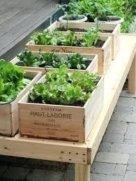 balcony herb garden patio herb garden gardening without a garden ideas for your patio or balcony