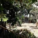 imagem de Guarinos Goiás n-16