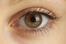 High Definition Pictures High Definition Vision Toronto Herzig Eye Institute