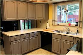 Martha Stewart Cabinet Hardware Home Depot Cabinet 49802 Home