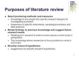 Literature Review Examples   Free   Premium Templates