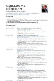 Example Of Cv Resume Delectable Judge Resume Samples VisualCV Resume Samples Database