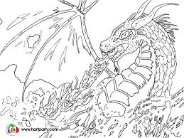 Adult Fire Breathing Dragon Coloring Pages Download Coloring Sheets