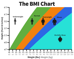 Diet Plan For Weight Loss According To Bmi Www