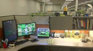 office desk fish tank. Office Desk Fish Tank. Tank