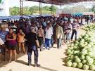 imagem de Jatobá do Piauí Piauí n-14