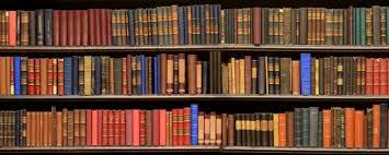 Imposing Book Shelf For Unique