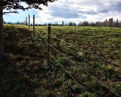 wire farm fence. Photo Of A Barbed Wire Fence For Horses And Cattle Near Sundre Farm