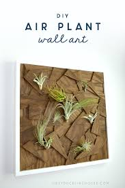 air plant wall art closeup save save on cut canvas wall art tutorial with diy air plant wall art from scrap wood ugly duckling house