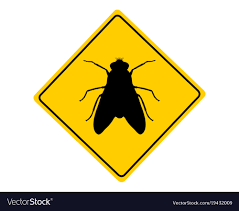 traffic sign for flies on white vector image