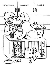 Beroepen Kleurplaat Dierenarts Huisdieren Pinterest