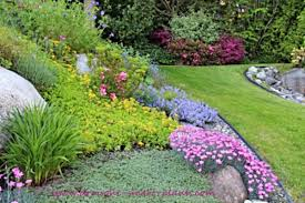 drought tolerant garden. Does This Look Like Your Dream Flower Garden? Drought Tolerant Garden L