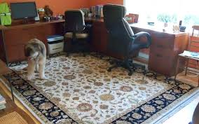 office rug home of rugs best of oriental rugs home rug solution from office rugs for