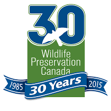 angonoka tortoise wildlife preservation wpc 30yearlogo in 1995 wildlife preservation