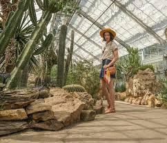 a renaissance woman world deserts room at the united states botanic garden