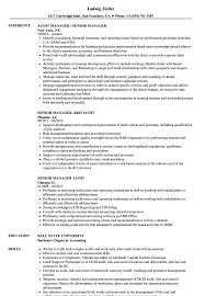 Senior Manager Audit Resume Samples Velvet Jobs